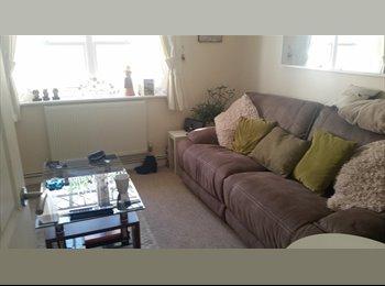 EasyRoommate UK - Priory Street, I bed flat - all to yourself! - Cheltenham, Cheltenham - £550 pcm