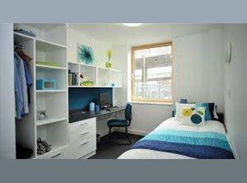 EasyRoommate UK - Luton ensuite room near university of Bedfordshire - Luton, Luton - £645 pcm