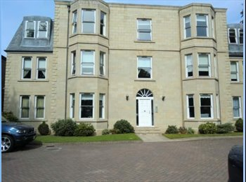 EasyRoommate UK - Double Room to rent in luxury fully furnished flat - Dundee, Dundee - £380 pcm