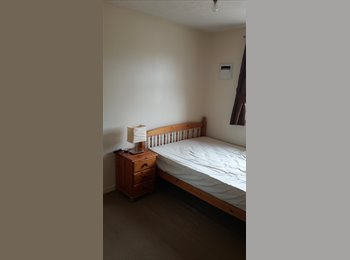 Large double room in a spacious flat