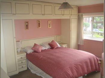 Large Double Bedroom near L'head/Dorking/Cobham