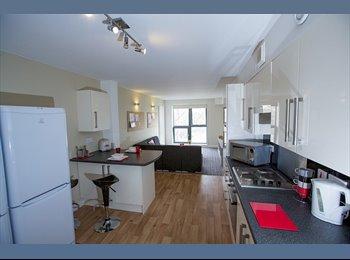 EasyRoommate UK - Big en-suite double room to rent - available now - Cambridge, Cambridge - £712 pcm