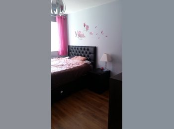 EasyRoommate UK - Double bedroom available from 20th May in a two bedroom flat - Newcastle City Centre, Newcastle upon Tyne - £470 pcm