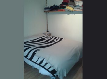 Large single room available