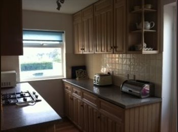 EasyRoommate UK - Lovely house close to to town uni and supermarket! - Beacon Heath, Exeter - £450 pcm