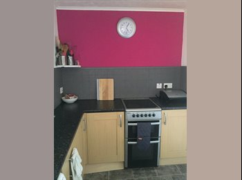 Bright double room £370pm