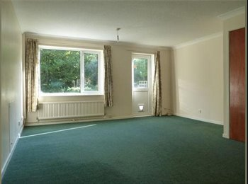 EasyRoommate UK - Large Double Room in Clean, Spacious House - Exeter, Exeter - £400 pcm
