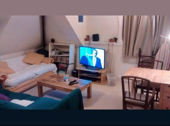 EasyRoommate UK - GREAT DOUBLE ROOM AVAILABLE IN REDLAND - Redland, Bristol - £375 pcm