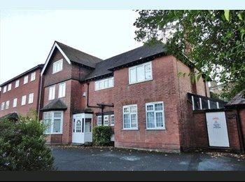 EasyRoommate UK - Charming flat with awesome people - Edgbaston, Birmingham - £200 pcm