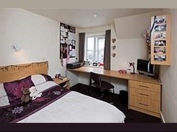 EasyRoommate UK - Double room in the Foundry - Loughborough, Loughborough - £360 pcm