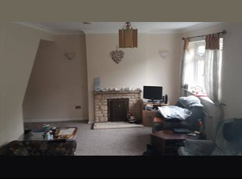 EasyRoommate UK - Cheap double room in Winton! only £280 a month! - Winton, Bournemouth - £280 pcm
