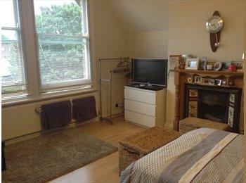 Light, spacious double room in second floor flat