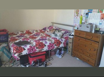 EasyRoommate UK - Lovely Double Room at Freeman's Meadow - BILLS INC - Leicester Centre, Leicester - £400 pcm