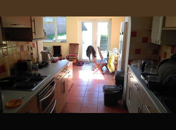 EasyRoommate UK - Single room to rent for summer - Horfield, Bristol - £280 pcm