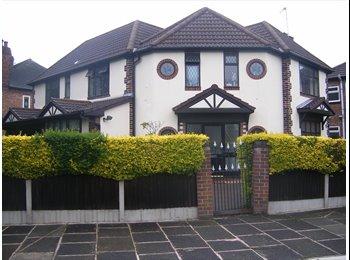 EasyRoommate UK - House Share, Chorlton - Chorlton Cum Hardy, Manchester - £340 pcm