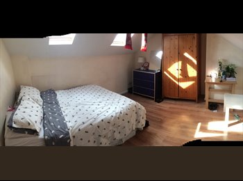 Double bedroom in house-share, great price!!