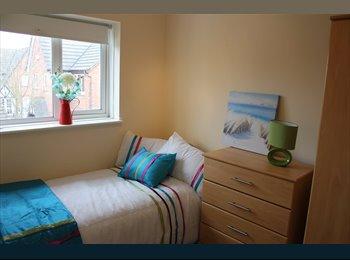 EasyRoommate UK - *REDUCED* LRG SINGLE ROOM IN EDGBASTON BILLS INC - Edgbaston, Birmingham - £330 pcm