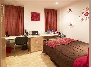 EasyRoommate UK - 1 Bedroom near University Move in Now - Leeds Centre, Leeds - £320 pcm
