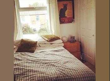 EasyRoommate UK - Lovely bright double room near Roath &city centre - Roath, Cardiff - £375 pcm