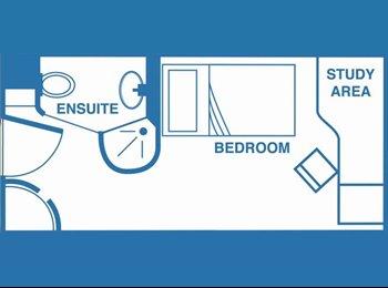 1 fantastic bedroom in shared flat