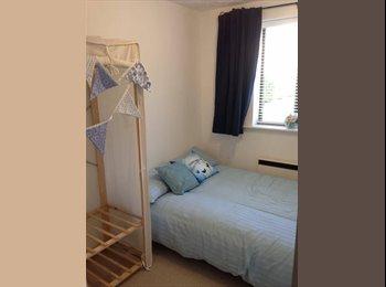EasyRoommate UK - Double room in welcoming home (Mon-Fri) - Twickenham, London - £550 pcm