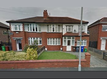 EasyRoommate UK - Double room for rent in Fallowfield- STUDENT HOUSE - Fallowfield, Manchester - £310 pcm