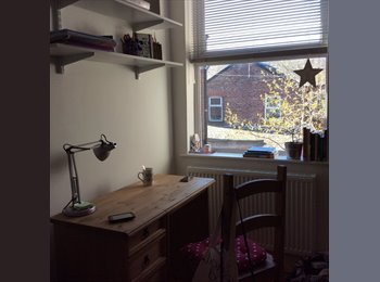 EasyRoommate UK - Amazing single room (double bed)  females only - Fallowfield, Manchester - £380 pcm