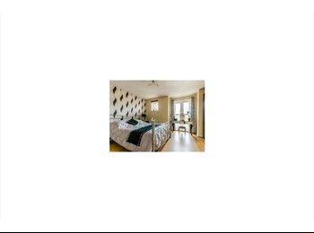 EasyRoommate UK - The Best Professional House in Cambridge - Cambridge, Cambridge - £700 pcm