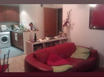 EasyRoommate UK - cozy home but please dont mess it up - Manchester City Centre, Manchester - £450 pcm