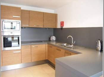 EasyRoommate UK - Spacious, quite Flat near by City Center - Manchester City Centre, Manchester - £530 pcm