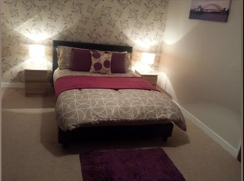 EasyRoommate UK - double bedroom to rent £120 a week  - Crystal Palace, London - £520 pcm