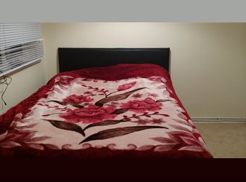 EasyRoommate UK - Dubble rooms to rent - Orpington, London - £400 pcm