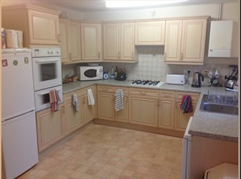 Ensuite Furnished Room available immediately