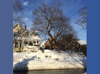 EasyRoommate US - LRG. RM. COMFORTABLE HOUSE FOR FOREIGN STUDENT/INT - Quincy, Boston - $700 pcm