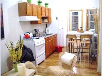 EasyRoommate US - Great Room in 4 bedrooms/2 bathroom appartment! - Park Slope, New York City - $995 pcm