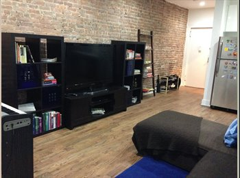 Newly-renovated apmt in hip central Harlem