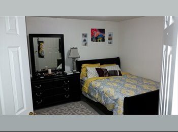 EasyRoommate US - Young Professional Looking for a Female Roommate - Kent, Kent - $600 pcm