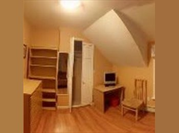 Room in Lynn MA