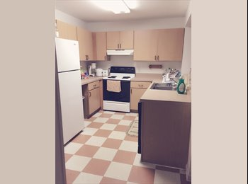 Campus Lodge fully furnished apartment