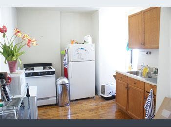 EasyRoommate US - $1200/mo - Park Slope Large Bedroom For rent - Park Slope, New York City - $1,200 pcm