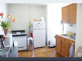 $1200/mo - Park Slope Large Bedroom For rent