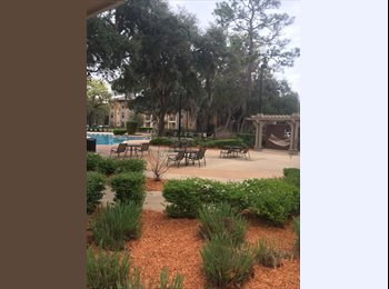 EasyRoommate US - 500/ 1br/1bath CHEAP Sublease in Gainesville, FL - Ocala, Gainesville - $500 pcm