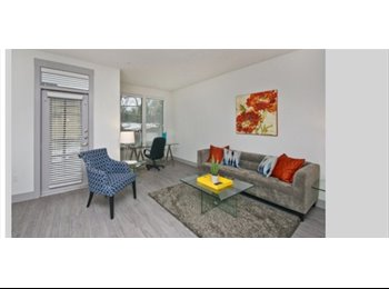 EasyRoommate US - 1 bed 1 bath furnished Apartment  - Oak Lawn, Dallas - $2,900 pcm