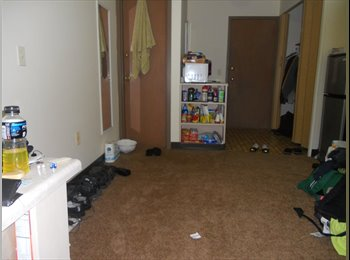 EasyRoommate US -  Efficiency Apartment near Union South, UW Madison - Downtown, Madison - $470 pcm