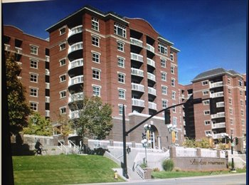 EasyRoommate US - Female roommate wanted for downtown apartment  - Downtown, Salt Lake City - $500 pcm