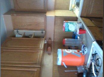 EasyRoommate US - looking for 1-2 roomates - Buffalo, Buffalo - $350 pcm