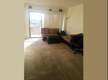 $250 - Shared room for Rent (fairfax va)