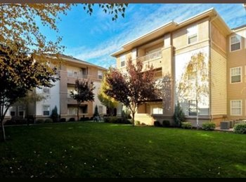 EasyRoommate US - Apartment room for rent - Pinedale, Fresno - $499 pcm