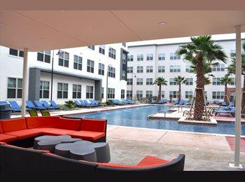 EasyRoommate US - Room Available - Downtown - Alamo Heights, San Antonio - $580 pcm