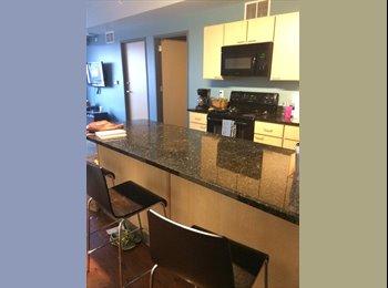 EasyRoommate US - Beautiful Bedroom in 4 Person Apartment - Ann Arbor, Ann Arbor - $650 pcm
